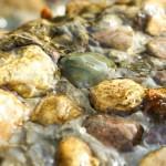 Water flowing in stones