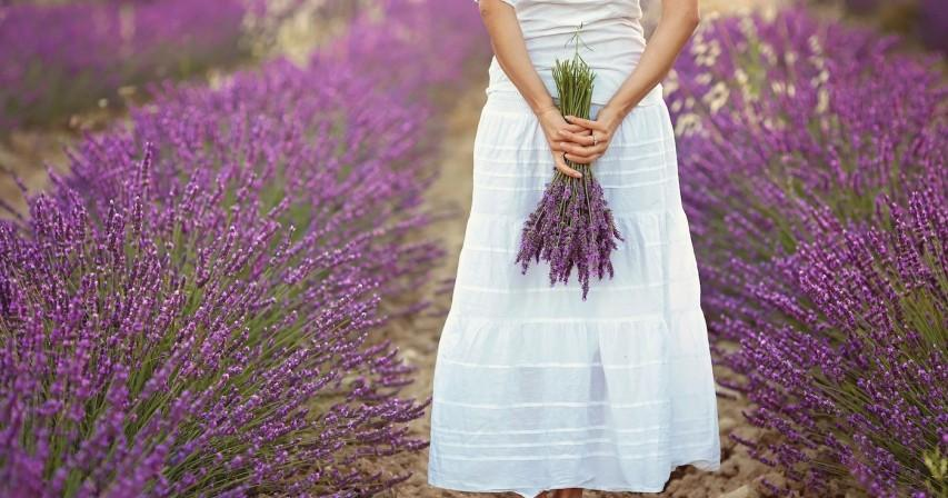 Beautiful young woman, holding lavender in a field on sunset