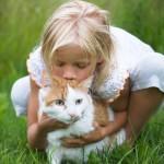 Kivimetsässä: Pelottomasti lasten aivojen puolesta