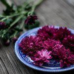 Lumoavat kukkaset lautaselle – kerää puutarhasta syötävät kukkaset