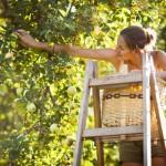 Onni on sitä, kun voi tehdä sitä, mikä tuottaa aitoa iloa ja tuntuu hyvältä sydämessä – 6 porrasta oman unelman toteuttamiseen
