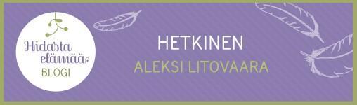 ALEKSI_BLOGI