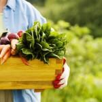 Ikääntymistä voi hidastaa oikeanlaisella ravinnolla