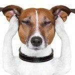 Turha meditoida, koska olen niin levoton!