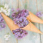 Maista kukkanen! – 5 tuttua kukkaa, jotka voit syödä
