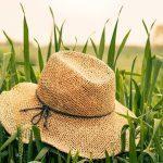 6 helppoa vinkkiä elämykselliseen kesälomapäivään