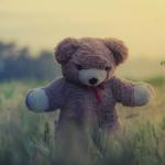 Korostunut turvallisuuden tarve voi estää kokemasta asioita, jotka toisivat elämään täyttymystä – Löydä turva sisältäsi ja ole rohkea