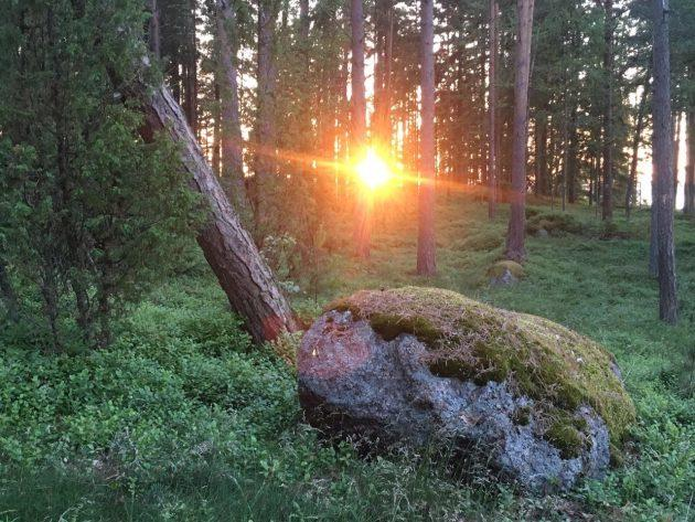 ilta_aurinko