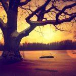 Vapaudu uhrina olemisesta – 6 askelta