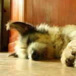 9 käytännön vinkkiä unettomuuden hoitoon