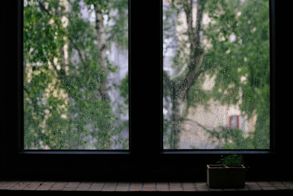 sateinen-ikkuna
