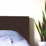 5 kasvia, joiden avulla nukut paremmin – Muratti on lähes ilmainen ilmanpuhdistin