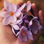 15 henkisen hyvinvoinnin merkkiä – Osaat olla tekemättä mitään