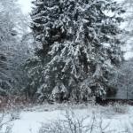 Joulua odotellessa – joulukuinen hämäryys vie muistoihin