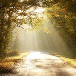Paraneminen voi olla elämämme tärkein päätös