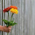 Et voi täyttää kaikkia odotuksia, joita sinulta vaaditaan – Laita rajat ja ole armollinen itsellesi!