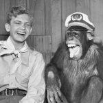 9 syytä miksi kannattaa (edes vähän) nauraa joka päivä