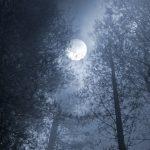 Täysikuu on täydellinen hetki kokeilla pientä rituaalia