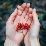 Keho muistaa kaiken, mitä sinulle on tapahtunut – Näin autat itseäsi ja kehoasi paranemaan