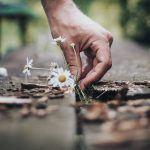 5 asiaa, joista kannattaa kiittää – Onnellisuus on taito löytää tavallisesta elämästä mahdollisimman paljon hyvää