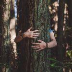 """Asiantuntija Jarko Taivasmaa: """"5 syytä, miksi sinunkin kannattaa mennä metsään"""""""