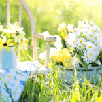 Kesä on hyvää aikaa oman pään tuulettamiselle ja keventämiselle – vaikkapa valittamisesta luopumiselle