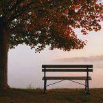 Mitä surijalle uskaltaa sanoa? – Joskus hiljaisuus on paras lohtu