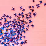 Hyvinvoinnista on miljoona mielipidettä – itseäsi kuuntelemalla löydät ne asiat, jotka saavat sinut kukoistamaan