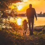 Pystytkö ottamaan rennosti kiireen keskellä? – Näin luonnosta saatava rohto helpottaa väsymystä ja rauhoittaa mieltä