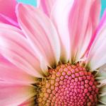 Aito itsetuntemus ei ole omien vikojen kaivelua, vaan ymmärrystä, arvostusta ja armollisuutta itseä kohtaan