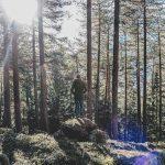 Eksyvä löytää – metsäretki ja kallioimarteella maustettu korvasienimuhennos
