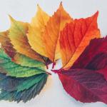 Tunnista muutosprosessin vaiheet – Muutos laittaa tunteet myllertämään ja tästä se johtuu